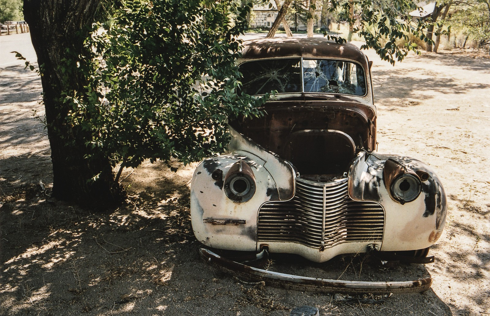 old rusty car with broken glass next to tree