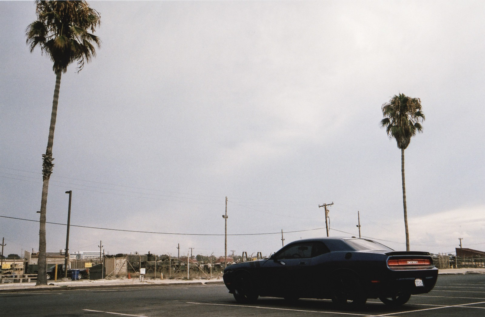 dodge charger on parking lot with palm trees