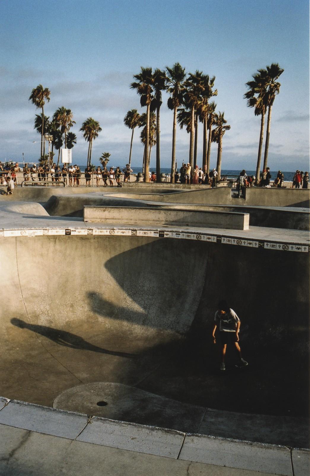 skaters in venice beach skate park