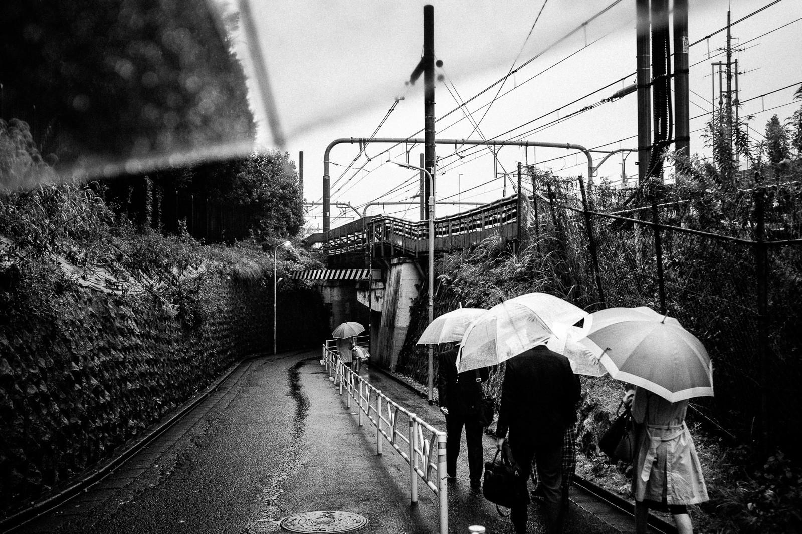 rainy walk in tokyo with umbrella blak and white