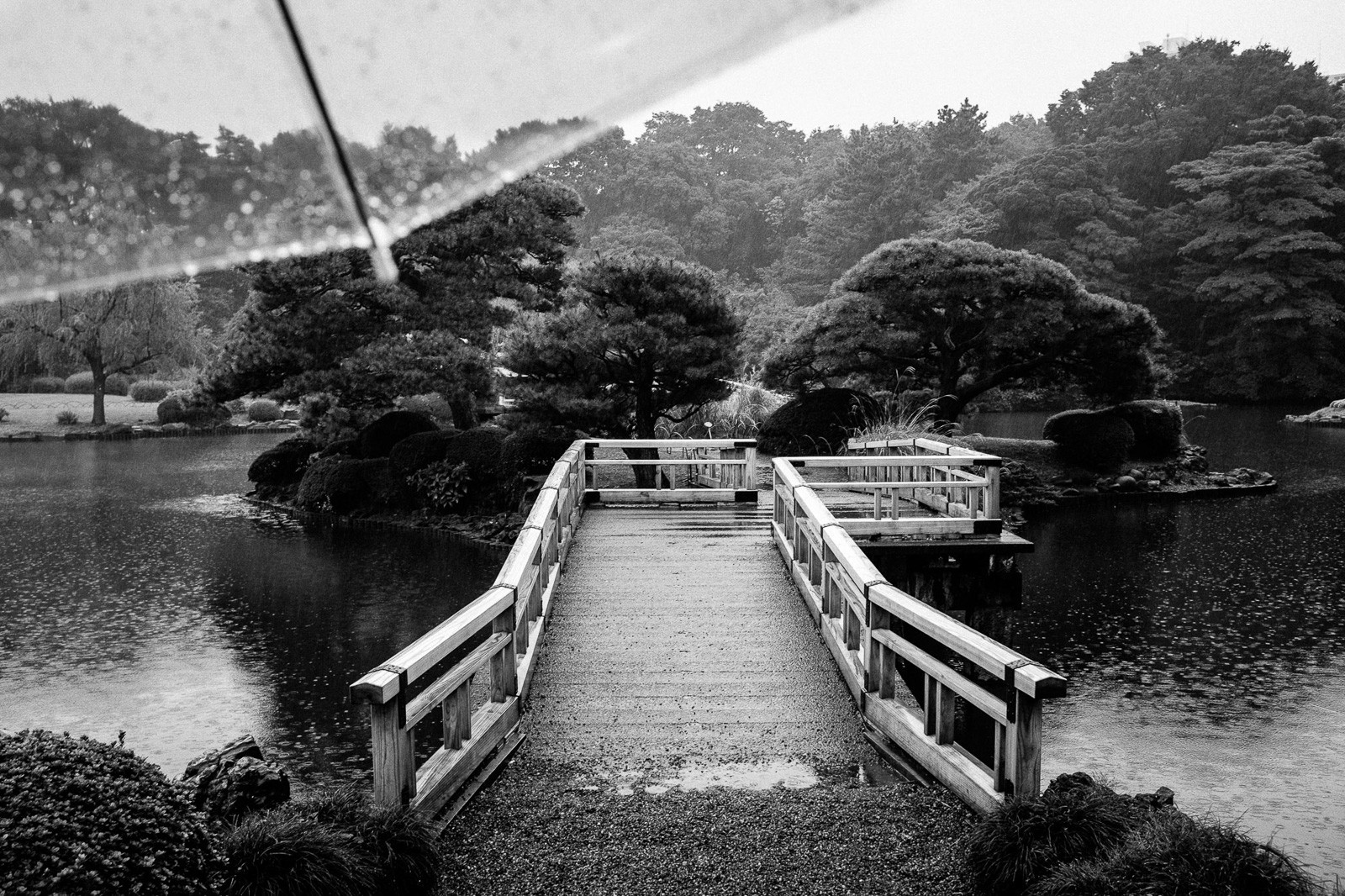tokyo-rains-1.jpg